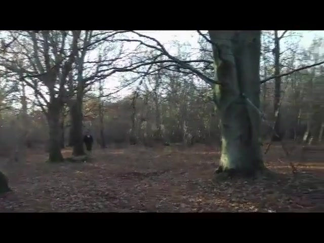 Slut Woman In Forest Gangbang Full Rubber Hooded