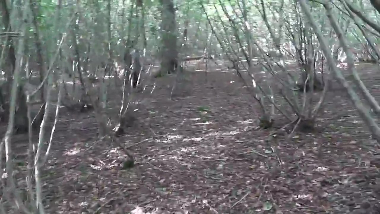 Slut Woman With Hood In The Forest And Fucked 2