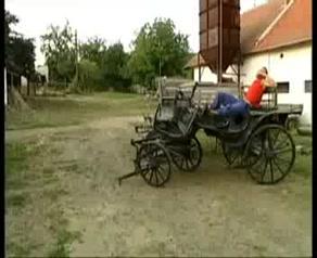 Mick Blue - Schulferien Auf Dem Ponyhof